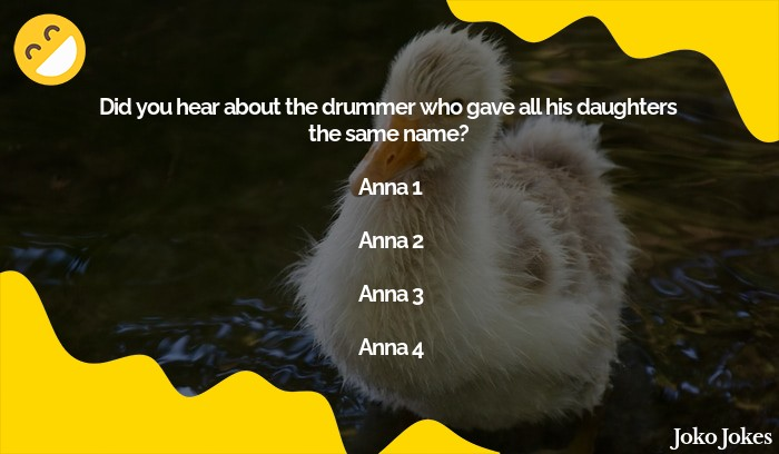 Anna joke, Did you hear about the drummer Who's wife who had twin girls?