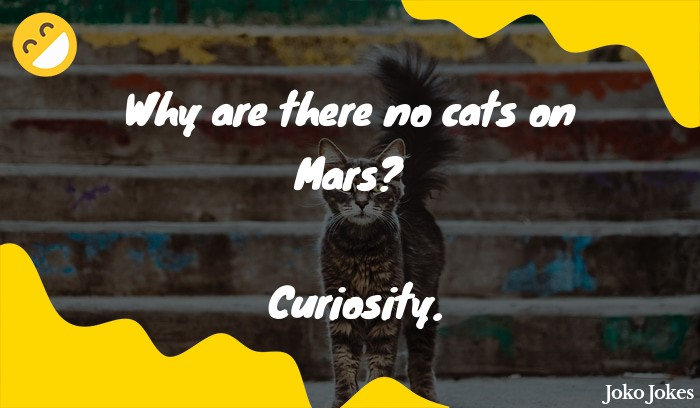 Curiosity joke, America just sent the Curiosity rover to Mars...