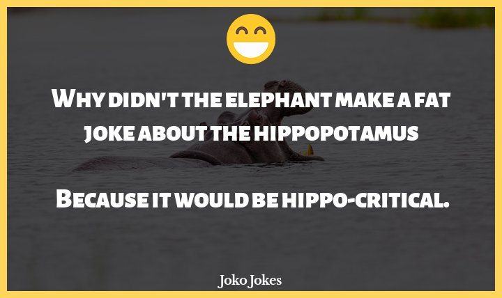 Hippopotamus joke, What did the hippopotamus say to the alligator, who kept picking on her without examining his own ac