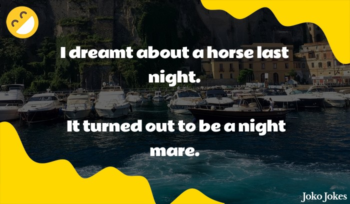 Mare joke, I had a dream last night about an armored horse.